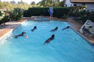 Nadando3