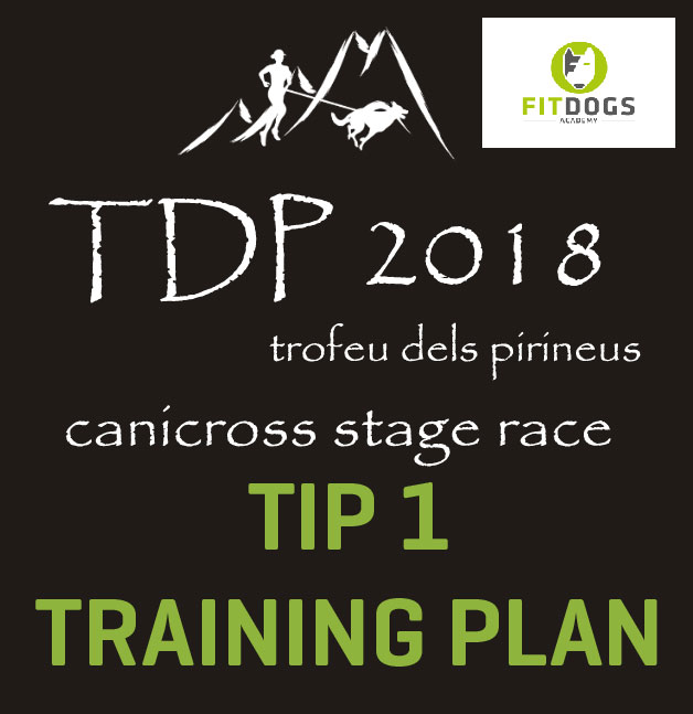 TIP 1 TDP training plan
