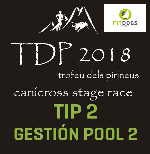 TIP 2 TDP gestionar pool 2 perros