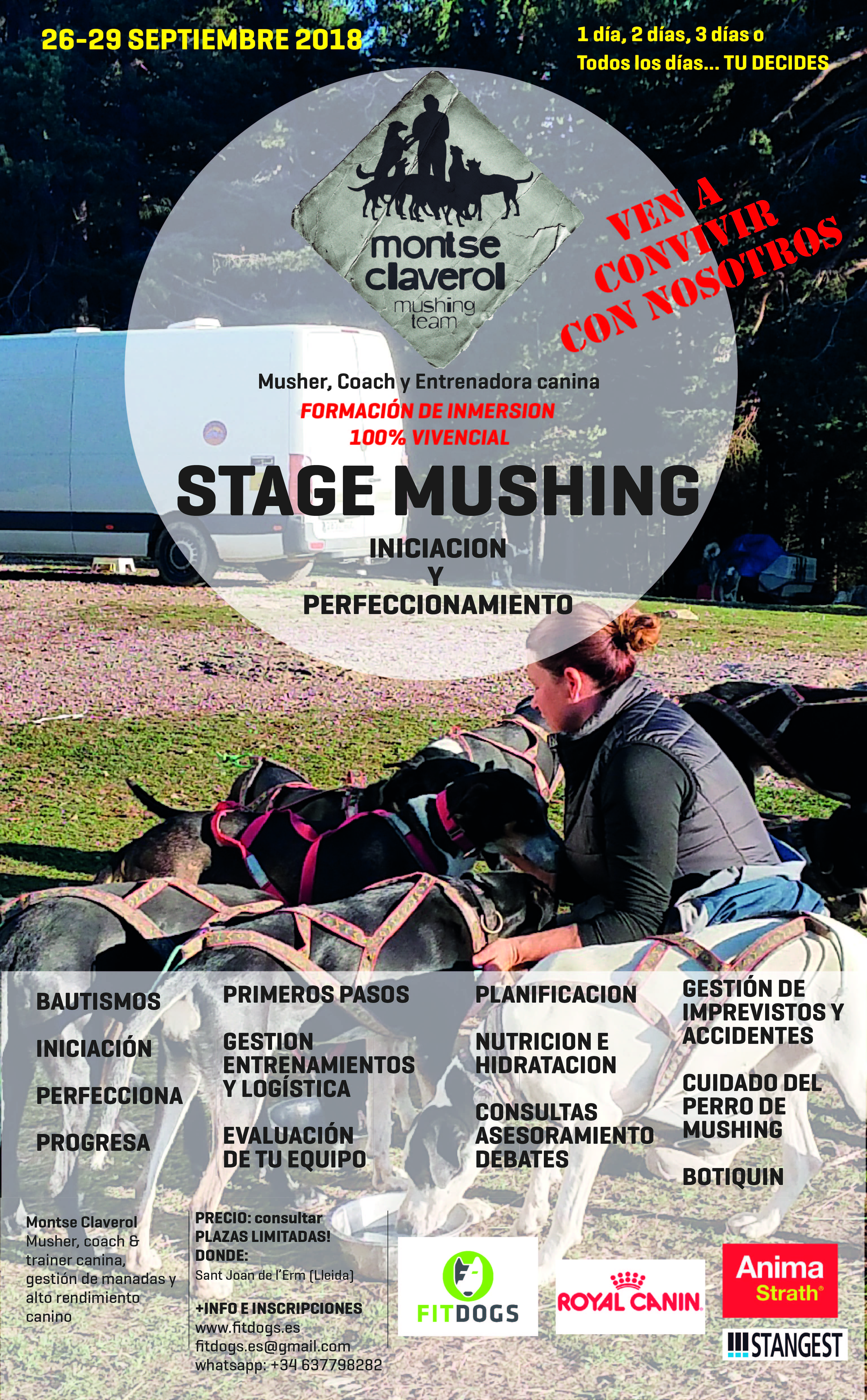 Poster STAGE MUSHING INMERSIÓN septiembre-01-01-01