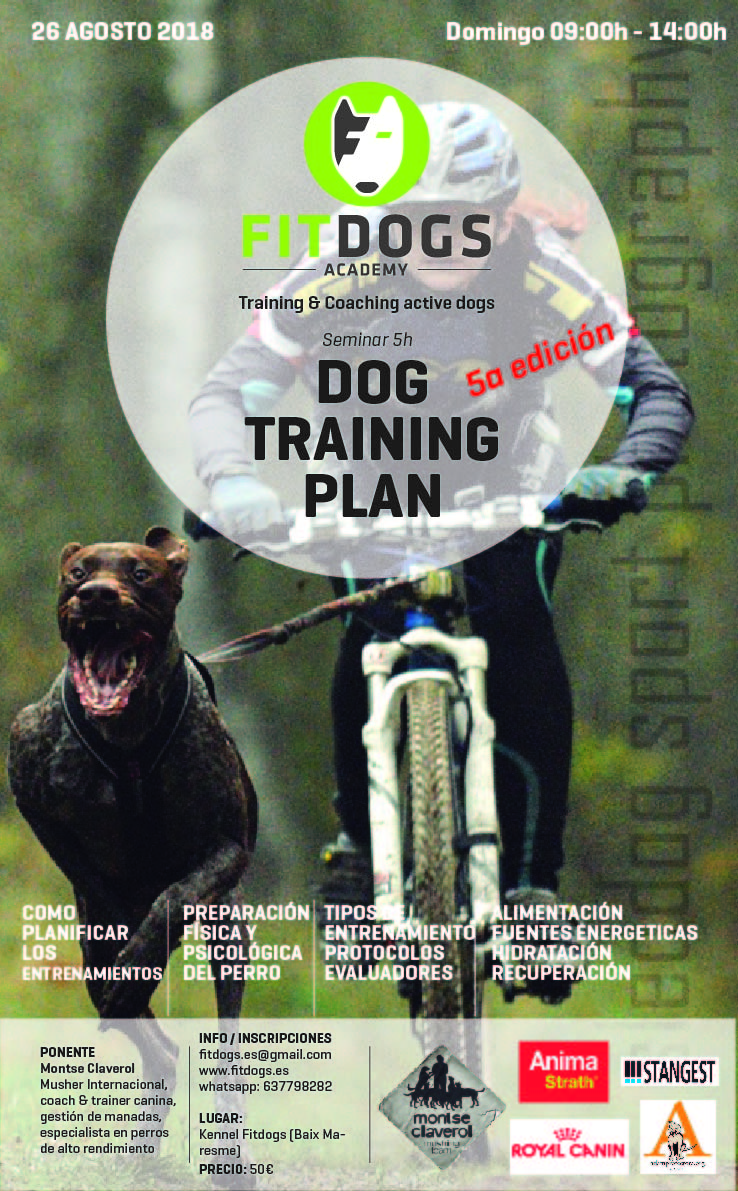 Poster Taller Dog Training Plan Agosto-01